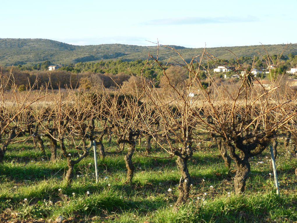 Album - La-Provence