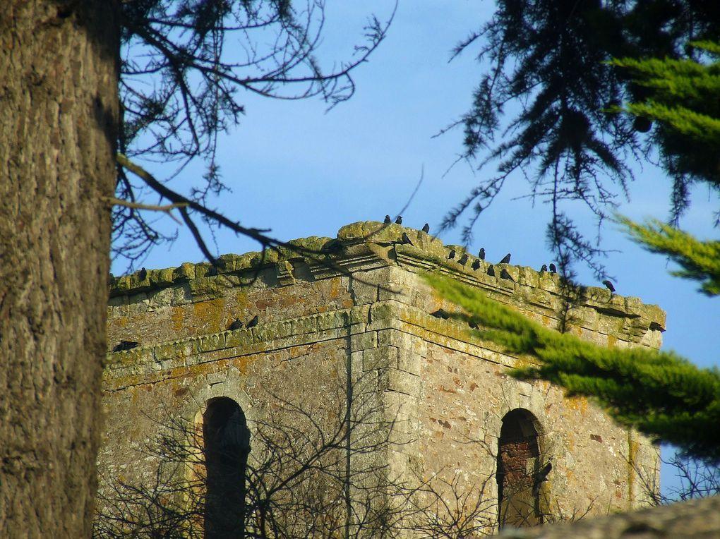 La tour de l'ancienne abbaye de Buzay sur la rive gauche de la Loire à l'ouest de Nantes.