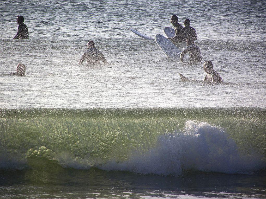 Surf, kite surf et paddle en presqu'ile guérandaise.