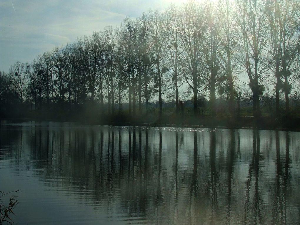 Le canal de La Martinière est une ligne d'eau de 15 km parallèle à la Loire entre Le Pellerin et Frossay.Creusé de 1882 à 1892 pour permettre aux grands voiliers de rallier le port de Nantes en évitant les bancs de sable de la Loire.