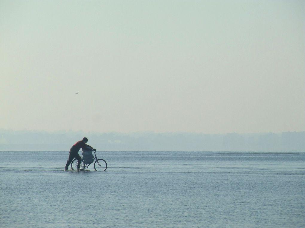 Le  Pouliguen ( Loire-Atlantique )