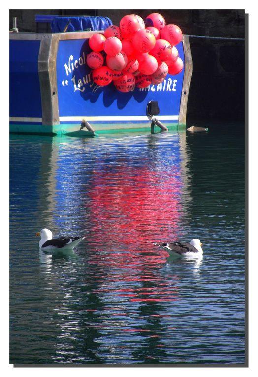 Reflets en tout genre dans le port du Croisic.