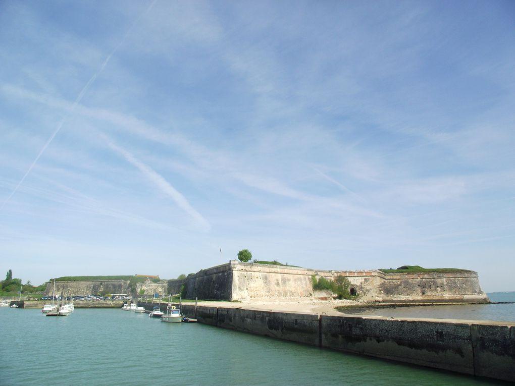 La plus grande des iles françaises de la côte atlantique du nord au sud !