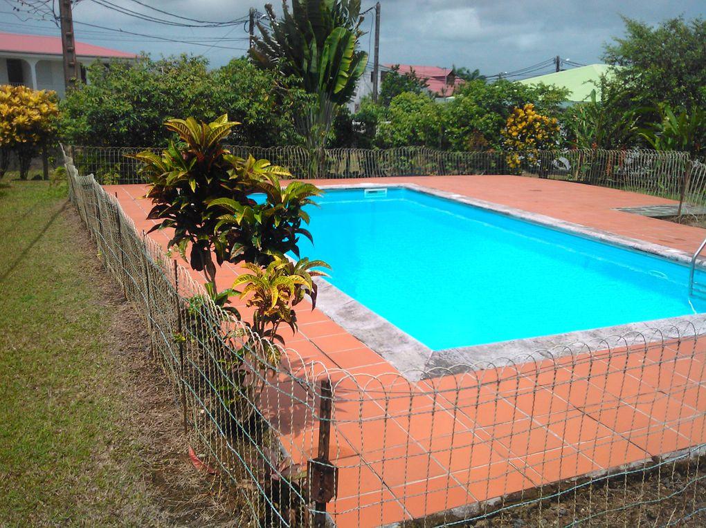 Loue bas de villa avec piscine privée aux Abymes, à pointe-à-Pitre, proche toutes commoditéstrès grand jardin (3000m²) fleuri et avec des arbres fruitierscuisine extérieure pour barbecueTV avec les chaines de la TV d'Orangelinge de maison