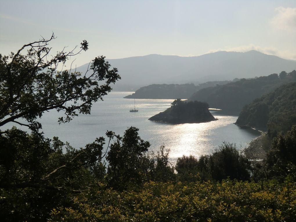 Album - Elbe, Pise, Cinqueterre, Portofino