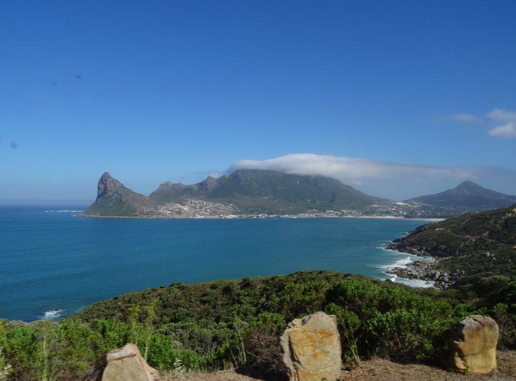La ville du Cap : principaux monuments et la fin du continent africain avec le Cap de Bonne Espérance