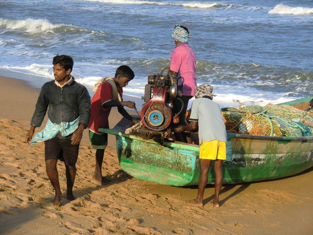 En fin de journée les pêcheurs arment leurs barques pour revenir tard dans la nuit