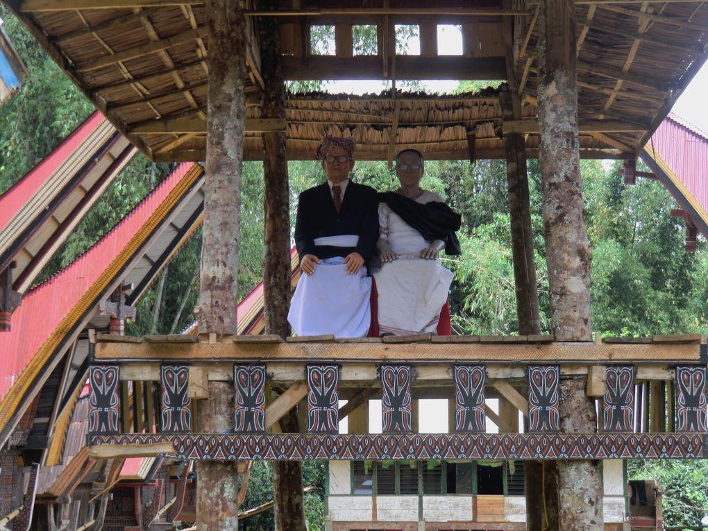 Les Torajas et leurs rites funéraires