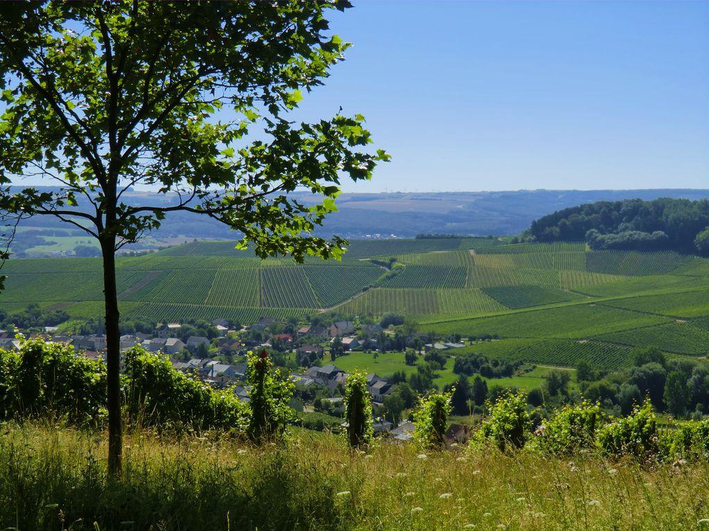 Album - Luxembourg