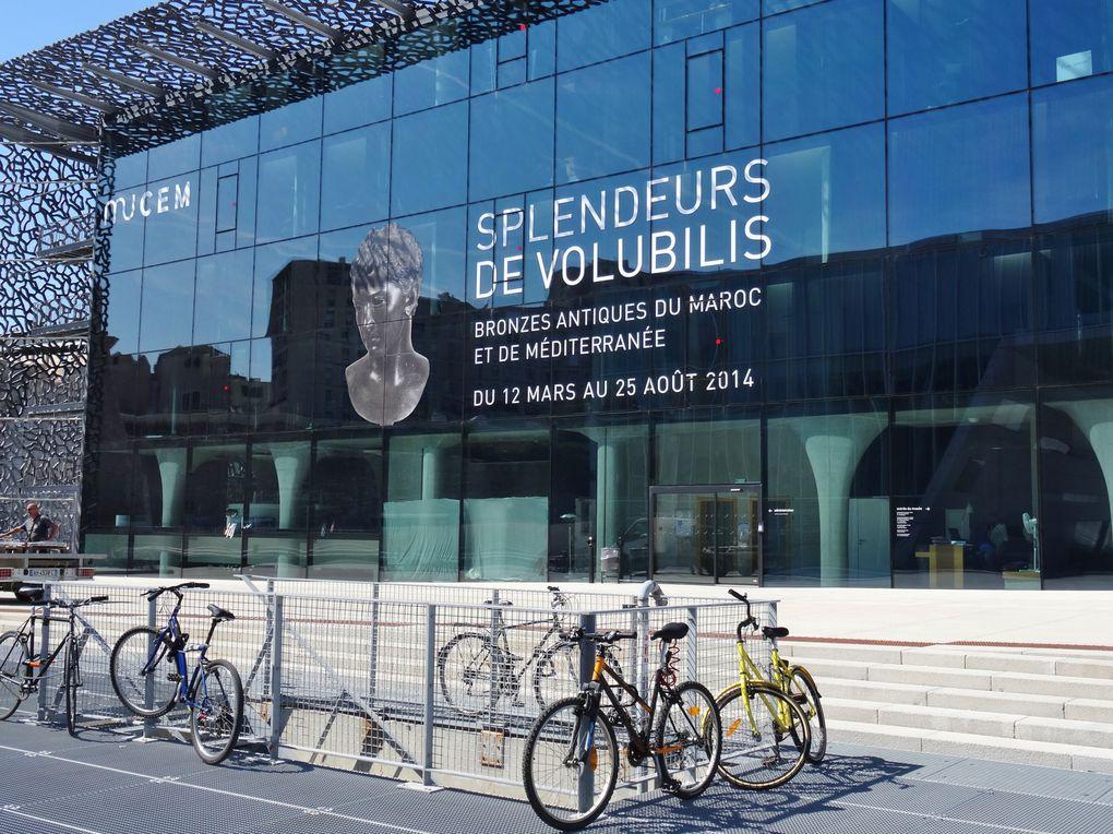 Rénovation du Port et expositions liées à l'année 2013