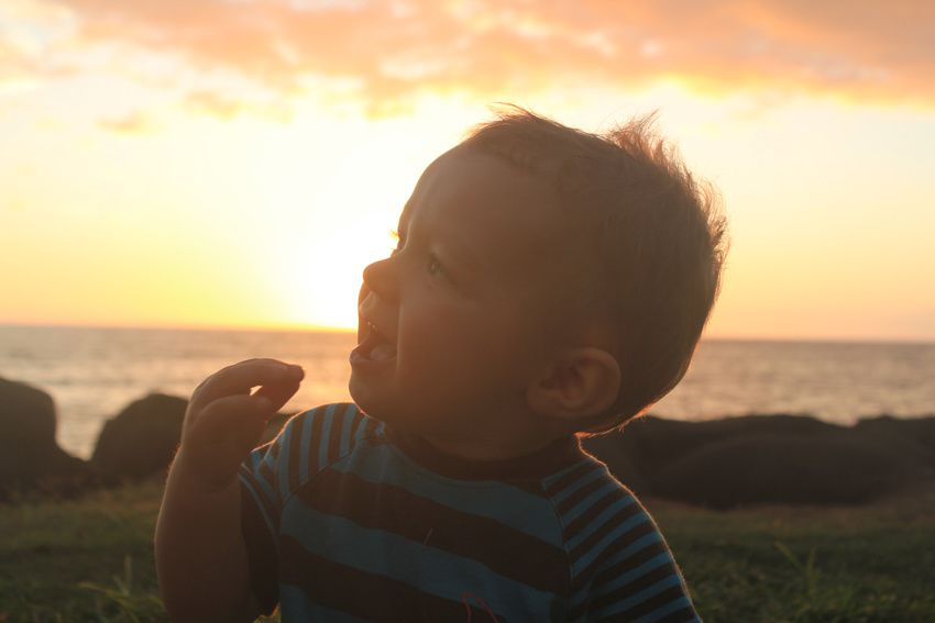 Album - Maui