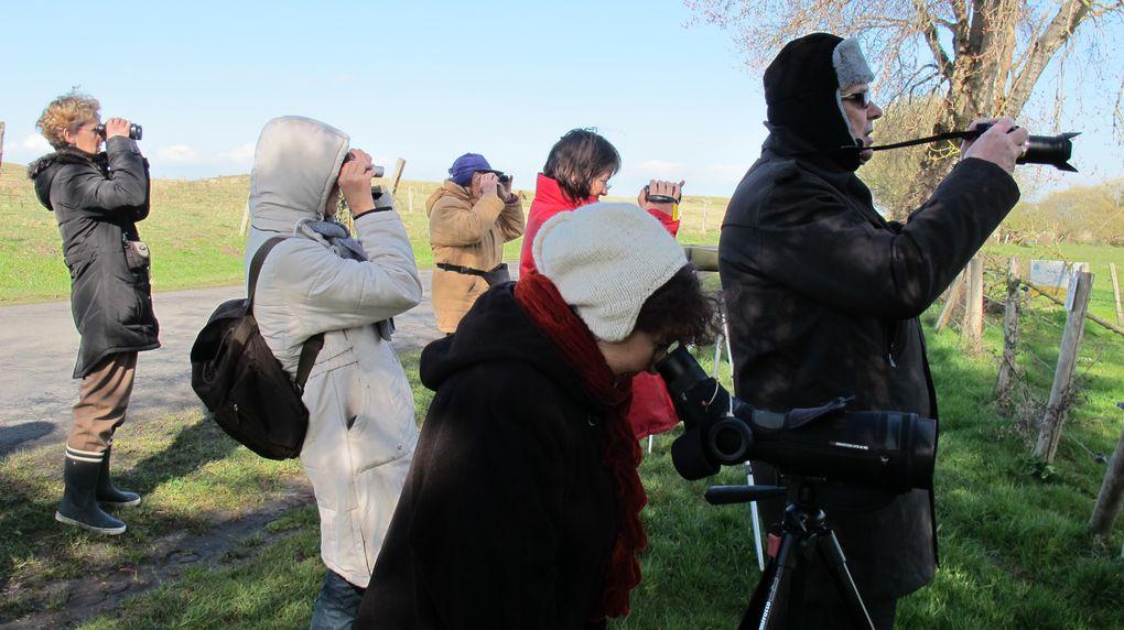 Projet innovant de l'EPN du canton de Duceysortie ornithologique et découverte de la digiscopie le 11 avril 2013