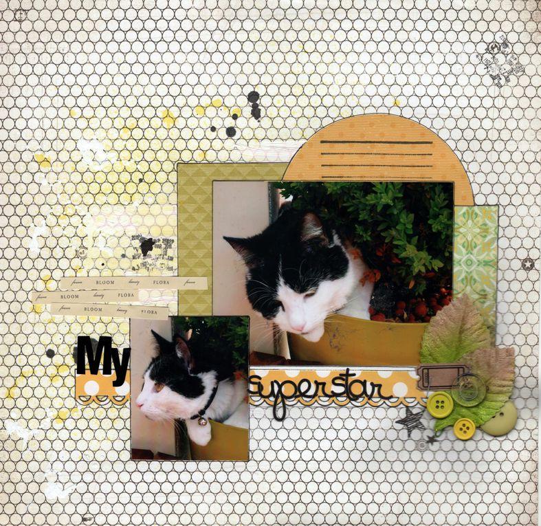Album - Mes-pages-30x30