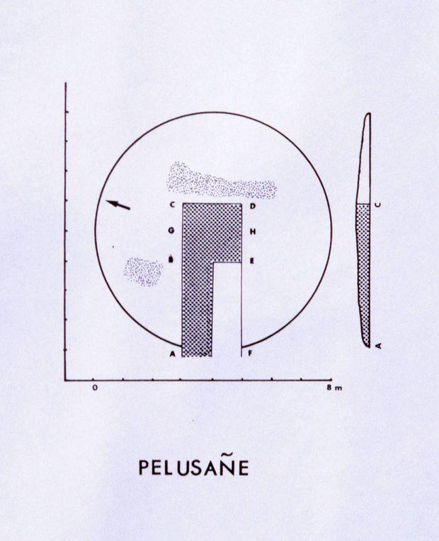 Album - Planches-fouilles-73a98