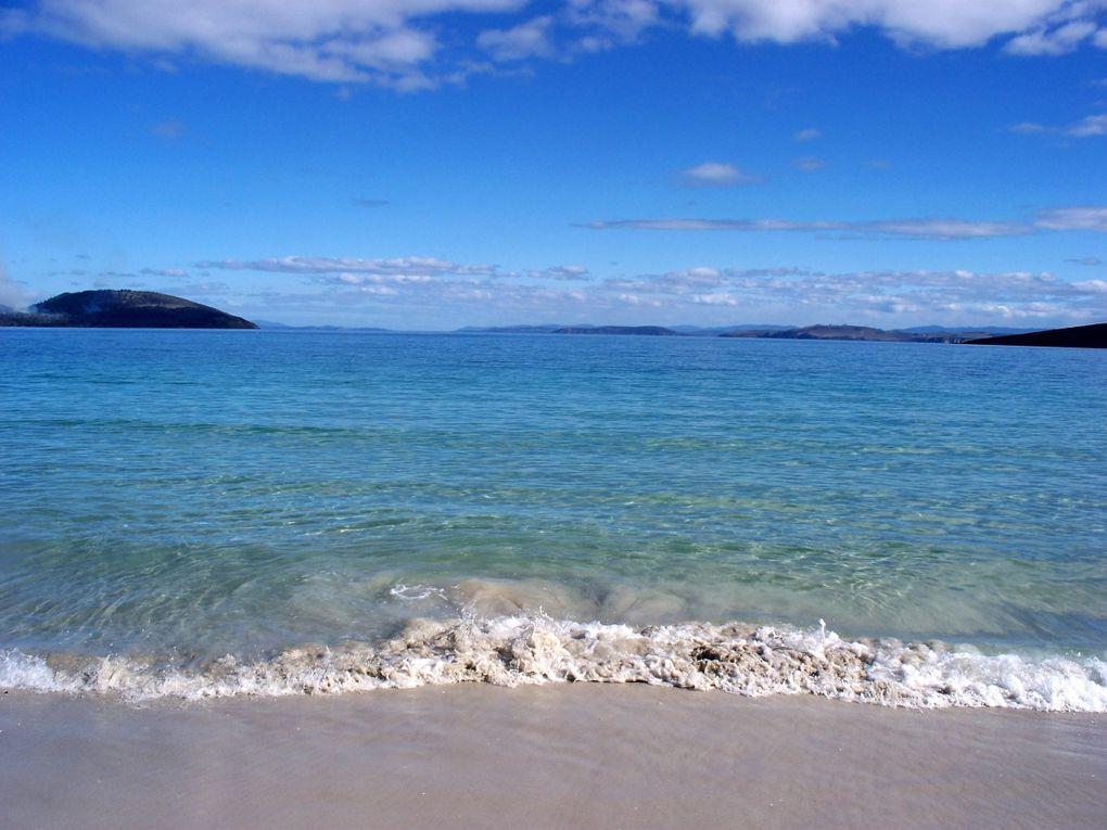 La Tasman Peninsula, a environ 2h de Hobart. Des falaises, des plages, et des animaux