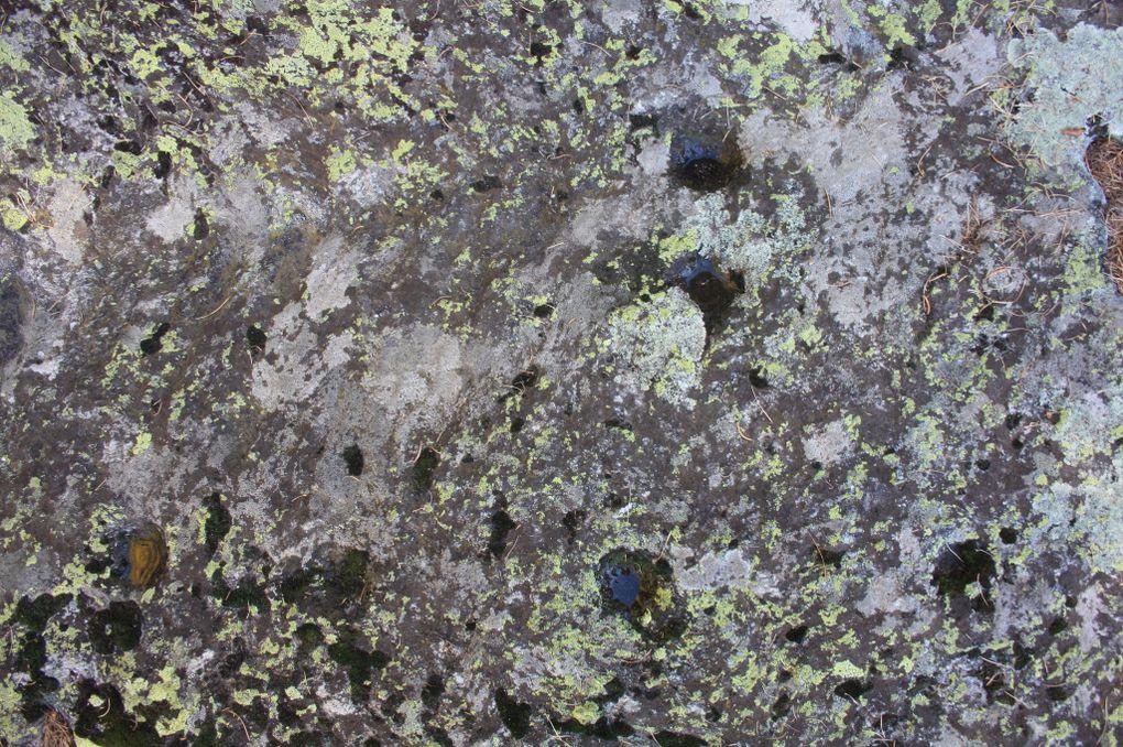 Album - Gravures-rupestres