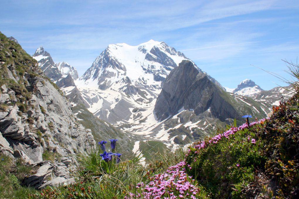 Panoramas de Tarentaise - Vanoise