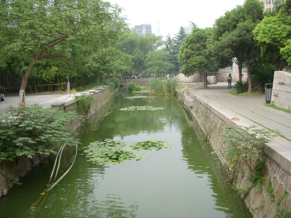 Album - Le campus de Tongji