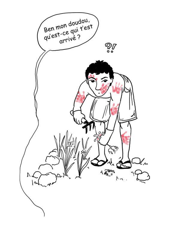 Quelques aspects de la vie quotidienne des Zoreils (Français de métropole) à La Réunion.