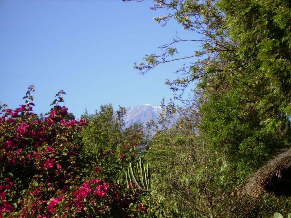 Ascension du Kilimanjaro.Arrivée au sommet le 1er janvier 2009 au levé du jour. 5895 mètres