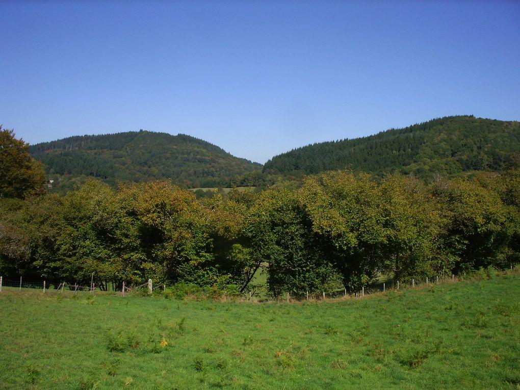 Rando d'automne Meymac, Mont Bessou, Plateau de 1000 Vaches, Lac du Chammet, Lac de Vassivière, source de La Vienne  175km