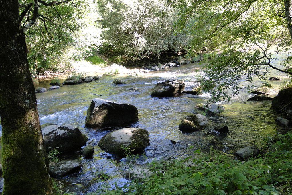 Les pérégrinations de Pom dans la Tarn