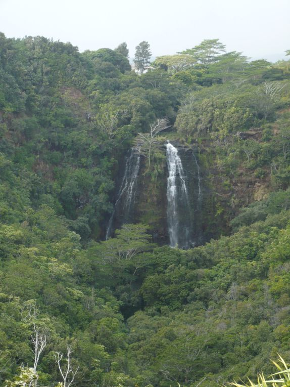Voyage post-Olympique sur Honolulu et Kauai - Mars 2010