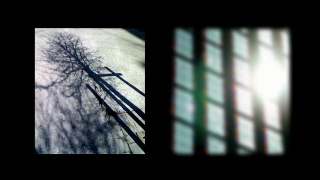 Album - PHOTOGRAMMES
