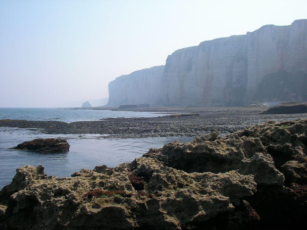 Visite guidée de la falaise D'Amont à Etretat , visite du Musée de la bénédictine à Fécamp et participation aux ballades forgionnes