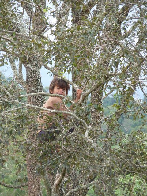 Album - de Posadas a Iguazu