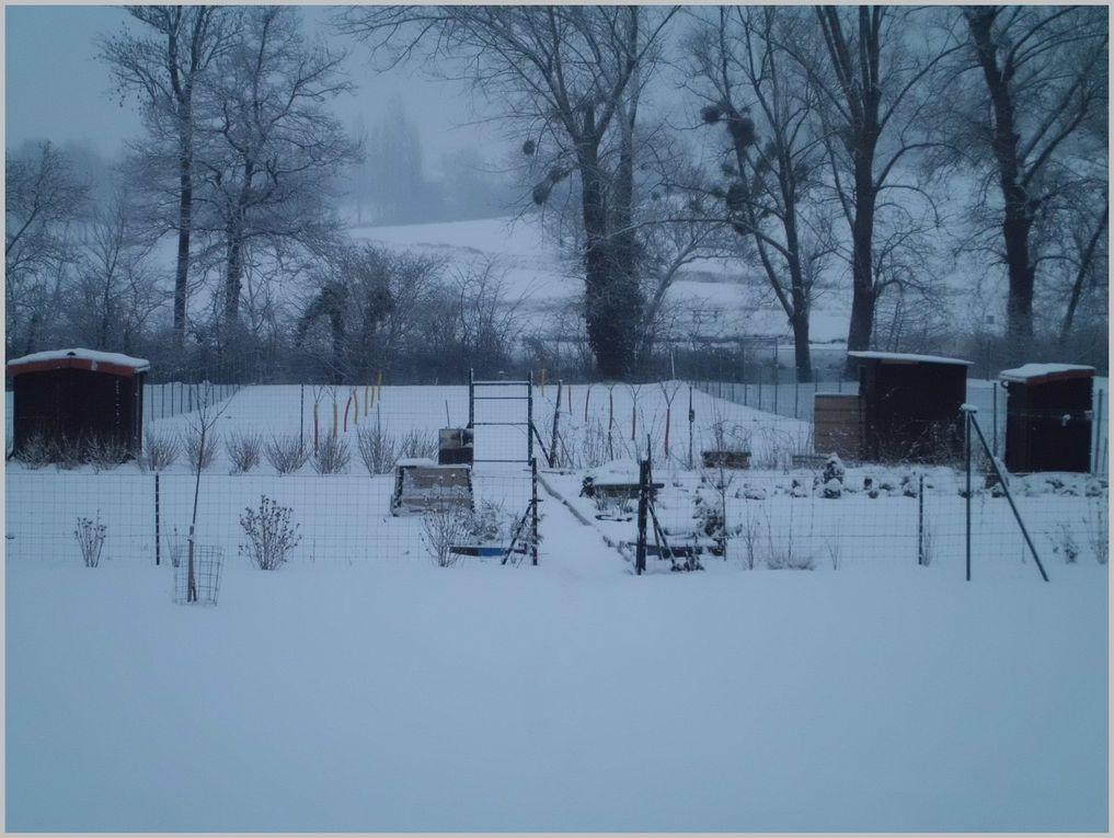 Quelques photos du temps , chaud , froid , glacé , neigeux .... en passant par l'été et l'hiver chez nous !