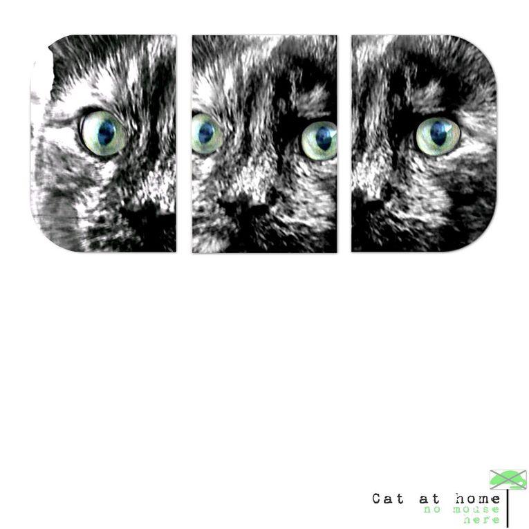 portraits de chats, version digiscrap épuré (C&S) par Helaina