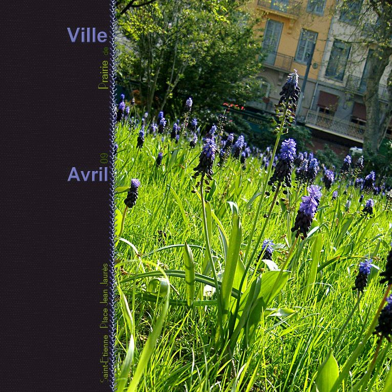 Album - Saint-Etienne et environs