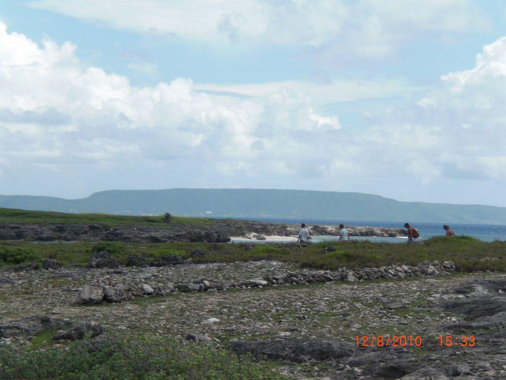 Partie intégrante de l'Archipel Guadeloupéen, ces îlets méritent une petite visite. Croyez- moi, vous ne serez pas déçus. Réserve naturelle, l'île ou plutôt les îlets de Petite- Terre ( ils sont deux, séparés par un bras de mer) sont ric