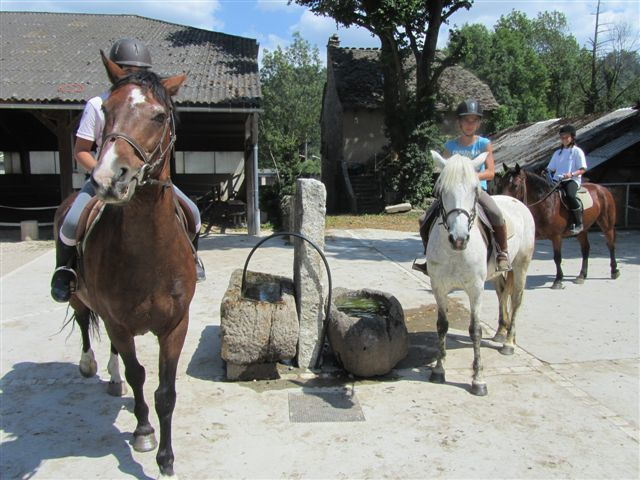 Album - Stage poney 2012