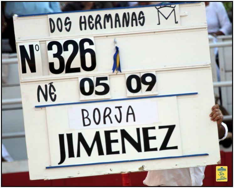 Novillada piquée avec 6 novillos de la Ganaderia Dos Hermanas (Laugier) pour Gonzalo CABALLERO, Borja JIMENEZ et Moralès  BALTI - Cavalerie Alain BONIJOL