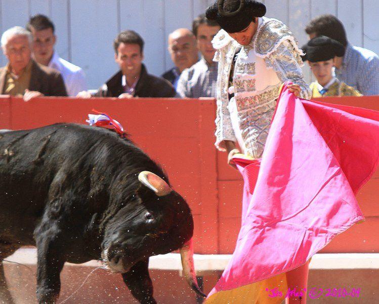 "FERIA DE PÂQUES à ARLESNovillada sans picador du Vendredi 2 avril 2010 Novillos ""Piedras Rojas"""