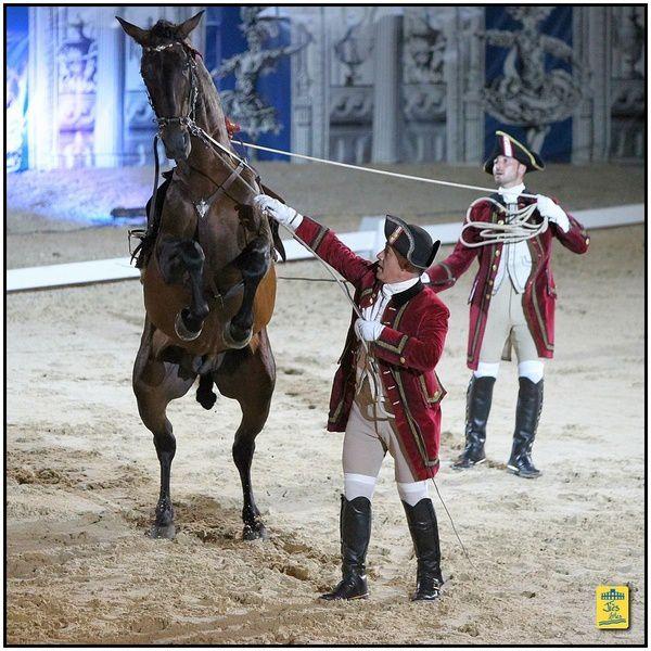 Arènes d'arles - Nuits de l'Art Equestre - 16 et 17 août 2013 L'Ecole Portugaise d'Art Equestre de Lisbonne
