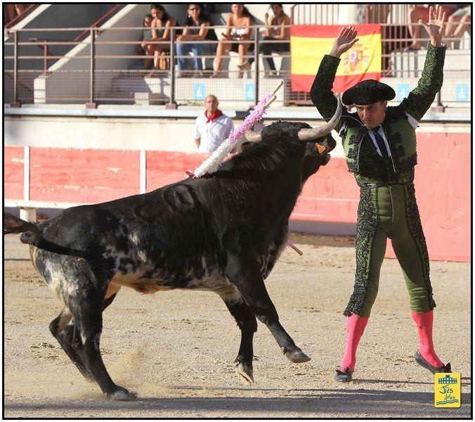 Dimanche 26 Août 2012 Novillada 6 Tierra d'Oc pour Alejandro RUBIO, Abel ROBLES et Lilian FERRANI, déclaré Vainqueur du trphée Nimeño II