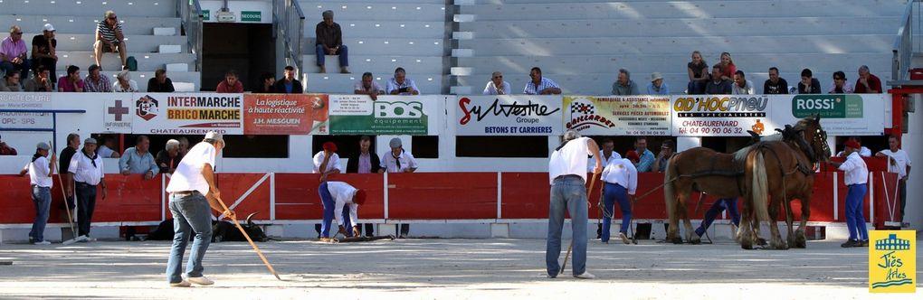 Arènes de CHÂTEAURENARD, Mardi 9 août 2011-17H00 Novillada non piquée Organisée par le Centre de Tauromachie de Nîmes pour David SEVILLA, Fabio CASTANEDA at Alejandro RUBIO