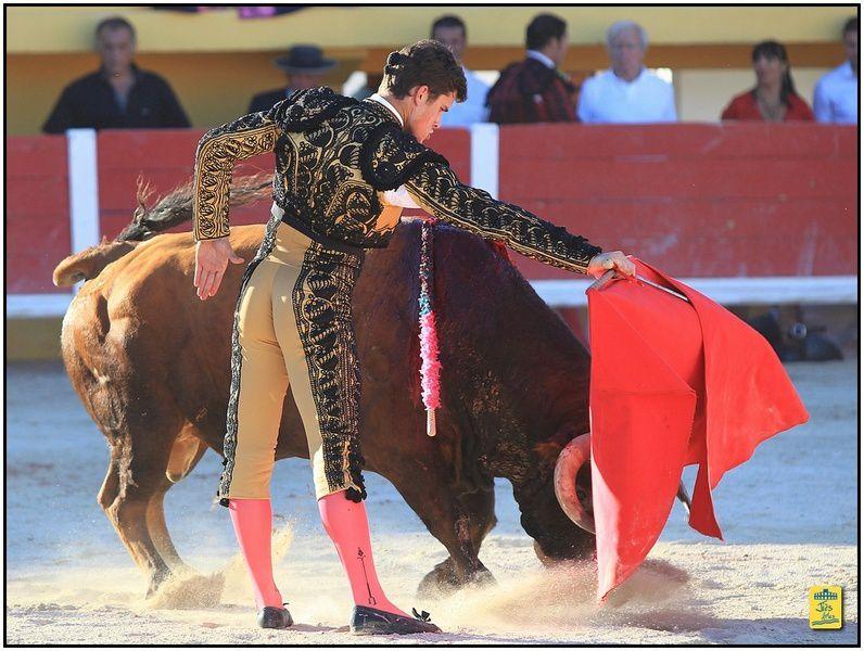 Corrida Flamenca des Saintes 6 toros de Lagunajanda pour Finito de Cordoba, Javier Conde et Daniel Luque. Cavalerie Philippe Heyral. Musiue Diego Carasco et Maria Toledo