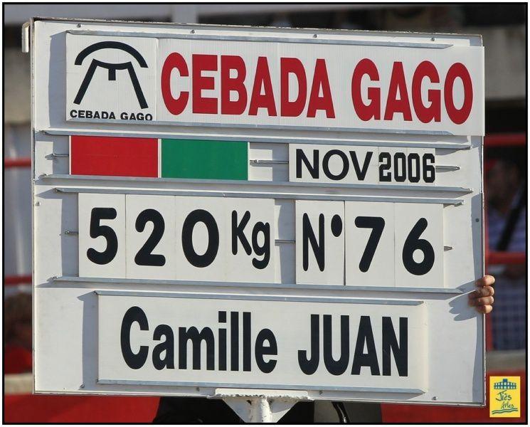 Dimanche 24 Juin 2012 Tarde - Corrida 6 Cebada Gago pouR Manuel Escribano, Oliva Soto et Camille Juan - Cavalerie Alain Bonijol