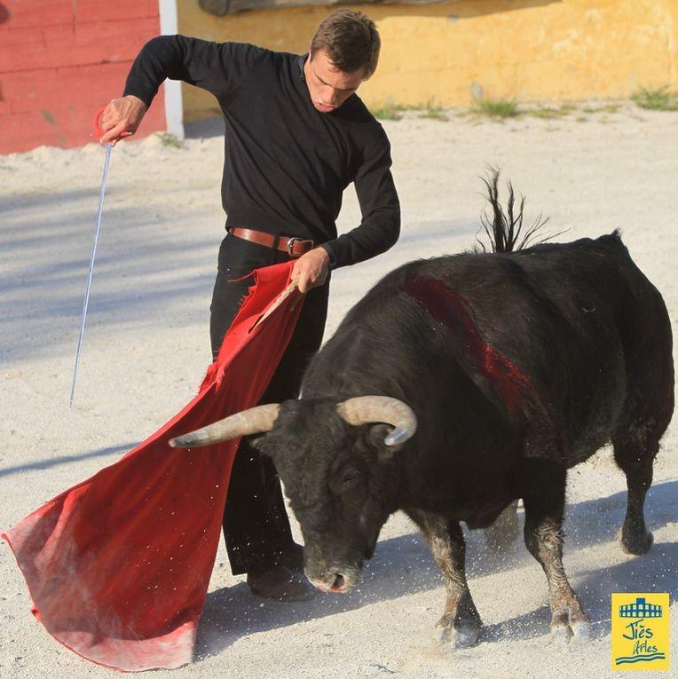 Samedi 2 avril 2011 6 Fiesta Campera et Assemblée Générale au Mas de la Chassagne pour la Peña Juan Bautista. 2 vaches en tienta et un toro de GALLON pour Juan Bautista avec CLEMENTITO invité pour la tienta.