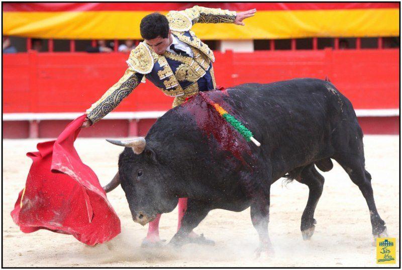 24ème ROMERIA- Dimanche 3 juin 2012 Corrida 6 Toros Las 2 Hermanas (Laugier) pour Juan BAUTISTA et Thomas DUFAU - Cavalerie Philippe HEYRAL