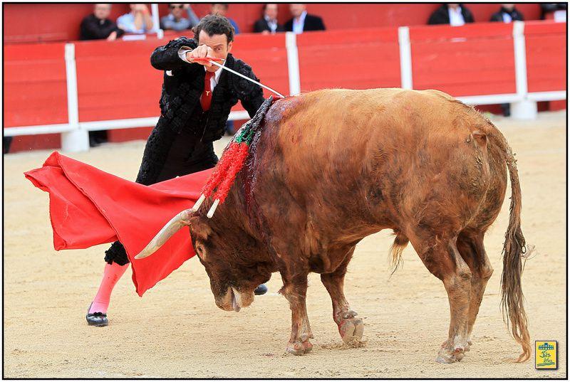 Mercredi 5 mai 2013-Arènes de Palavas - Corrida de Luis Algarra pour Enrique Ponce, Finito de Cordoba et Daniel Luque - Cavalerie Philippe Heyral