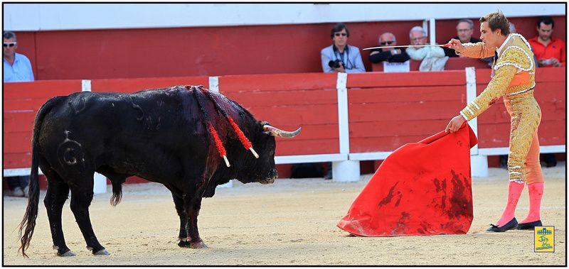 Arènes de Palavas- Mercredi 8 mai 2013 à 17h00 - Corrida 6 toros de Fuente Ymbro pour Juan Bautista-Sébastien Castella et Miguel-Angel Perrera - Cavalerie Philippe Heyral