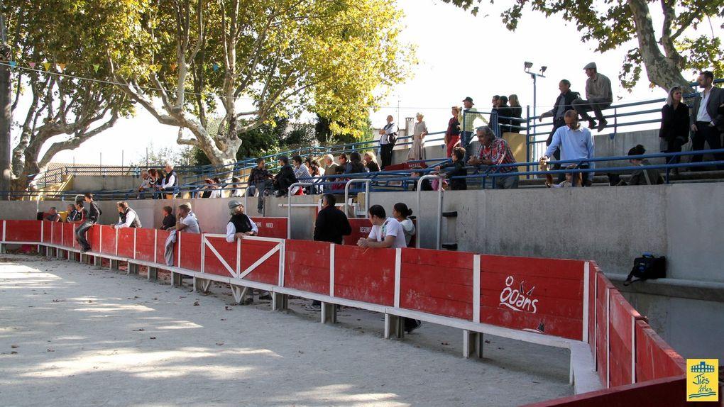ASSOCIATION FRANÇAISE DES AFICIONADOS PRACTICOS - Journée de l'Aficion et Tienta de la Presse à CAISSARGUES le Dimanche 16 Octobre 2011