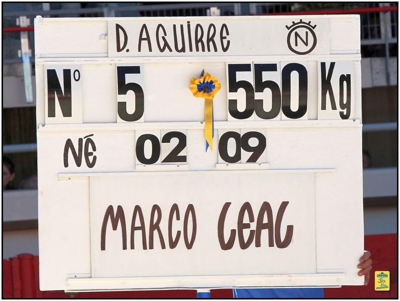 Arènes de St-Martin-de-Crau - Corrida du dimanche 27 avril 2014 à 17H00 - 6 toros de Dolorès Aguirre pour Sanchez Vara, Joselillo et Marco Léal - Cavalerie Bonijol - Musique Chicuelo ii