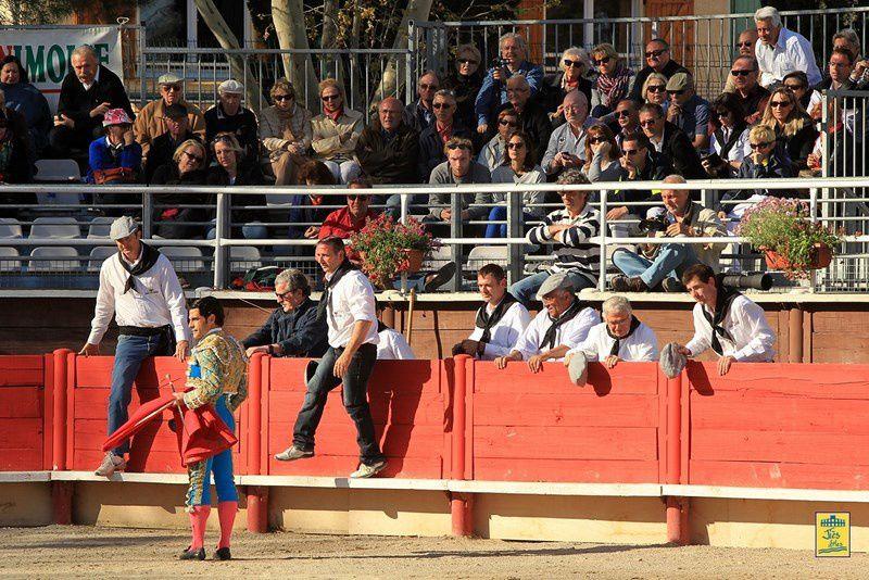 Arènes de VERGEZE (30) Dimanche 14 avril 2013 à 16H30-  Corrida du Rhôny avec  6 Toros des Frères Tardieu pour Marc Serrano, Antonio-João Ferrera et Alberto Lamelas - Cavalerie Heyral
