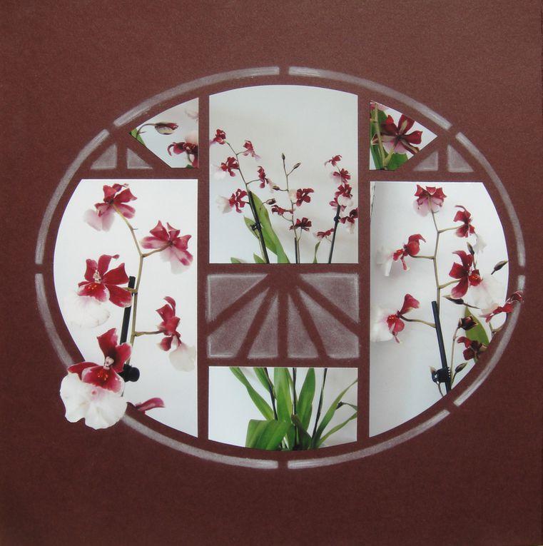 Album - le-jardin-au-fil-des-saisons